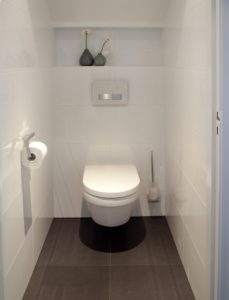 Toilet Project 3