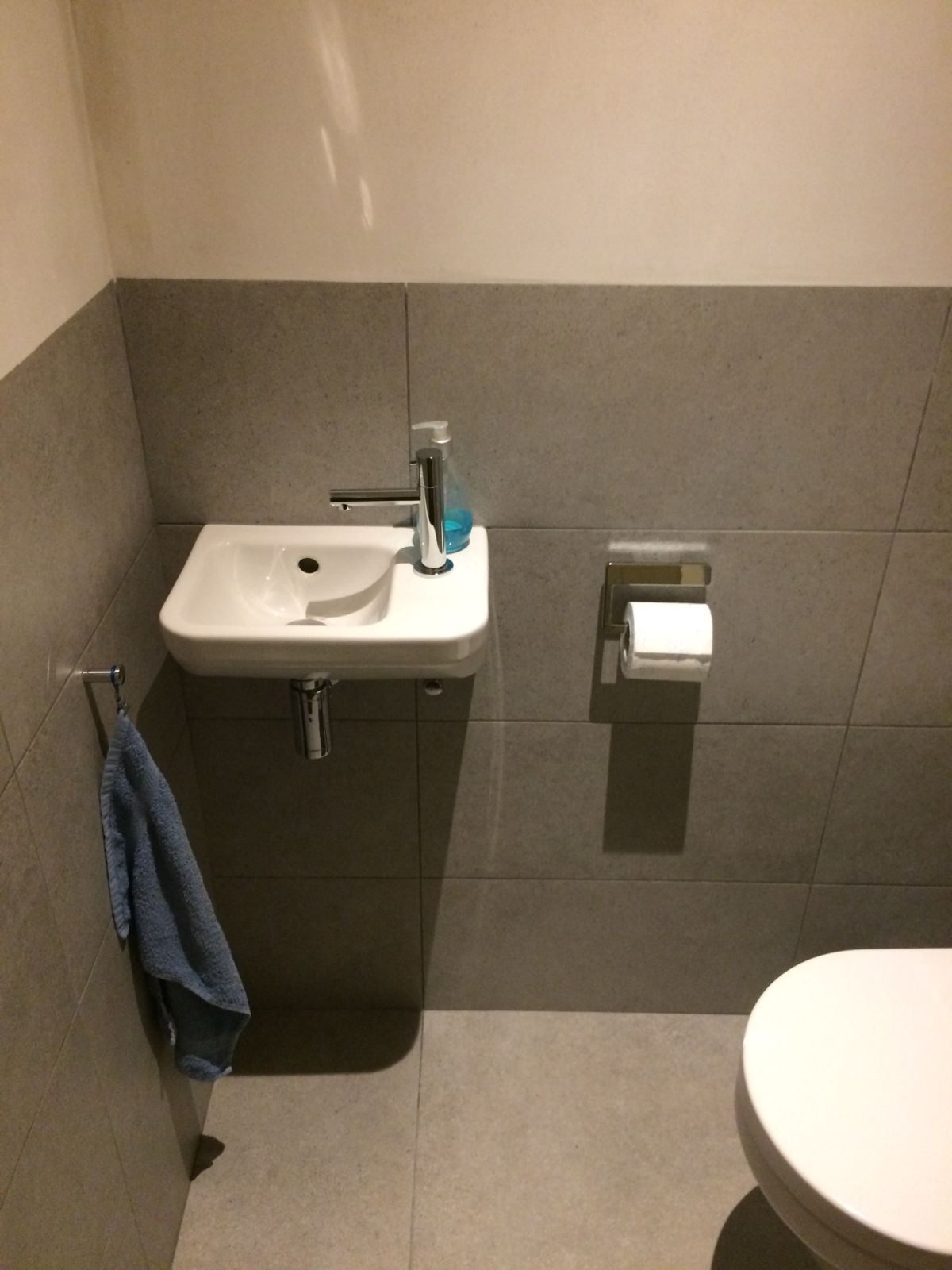 Toilet Project 8